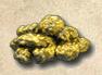 pepitas de oro.png